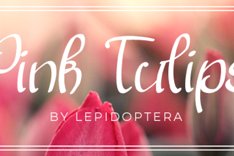 Pink Tulips 2 Font