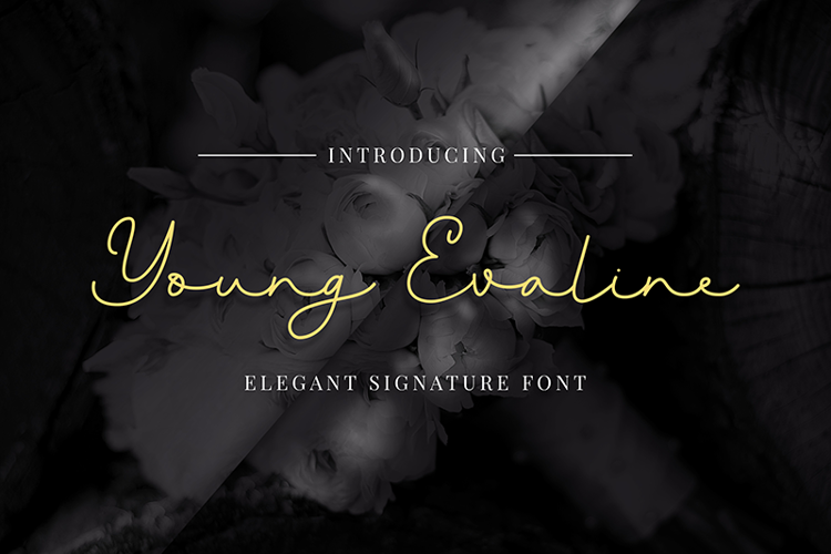 Young Evaline Font