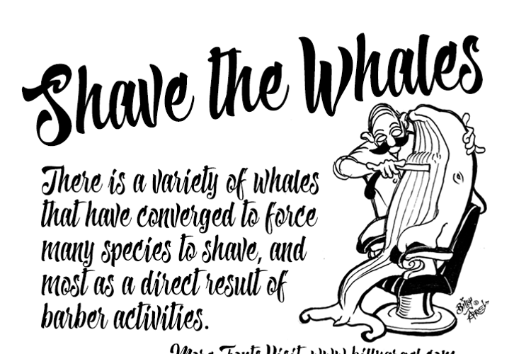 Shave the Whales Font