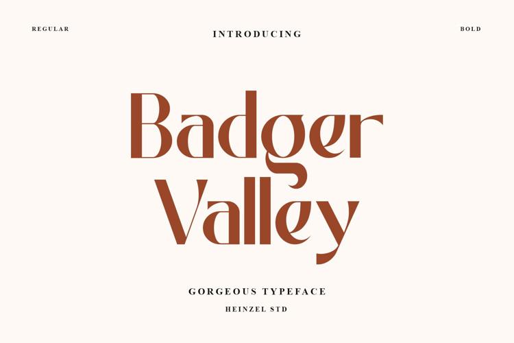 Badger Valley Font