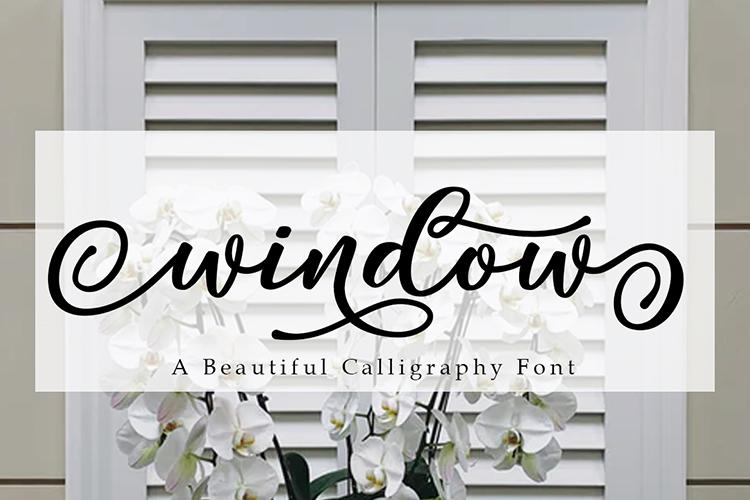 Window Font