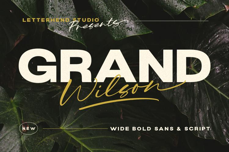 Grand Wilson Sans Font