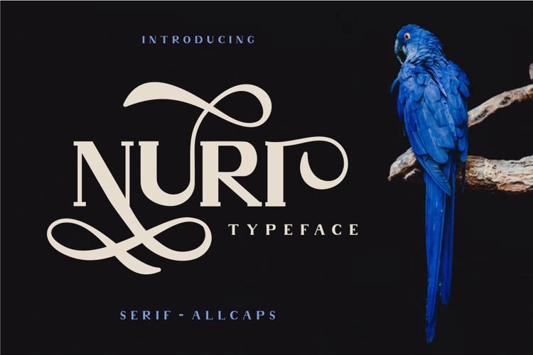 Nuri Free Font