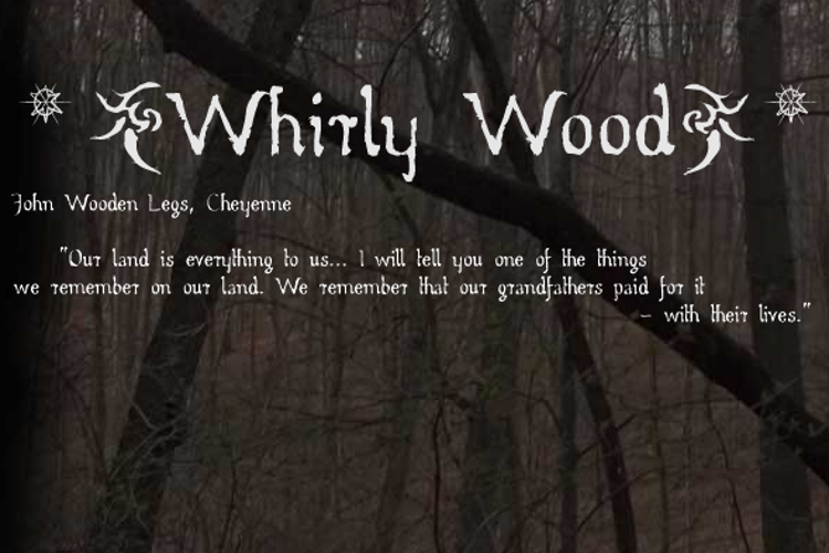 Whirly Wood Font