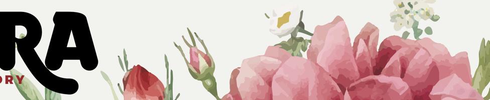Dora Typefoundry background